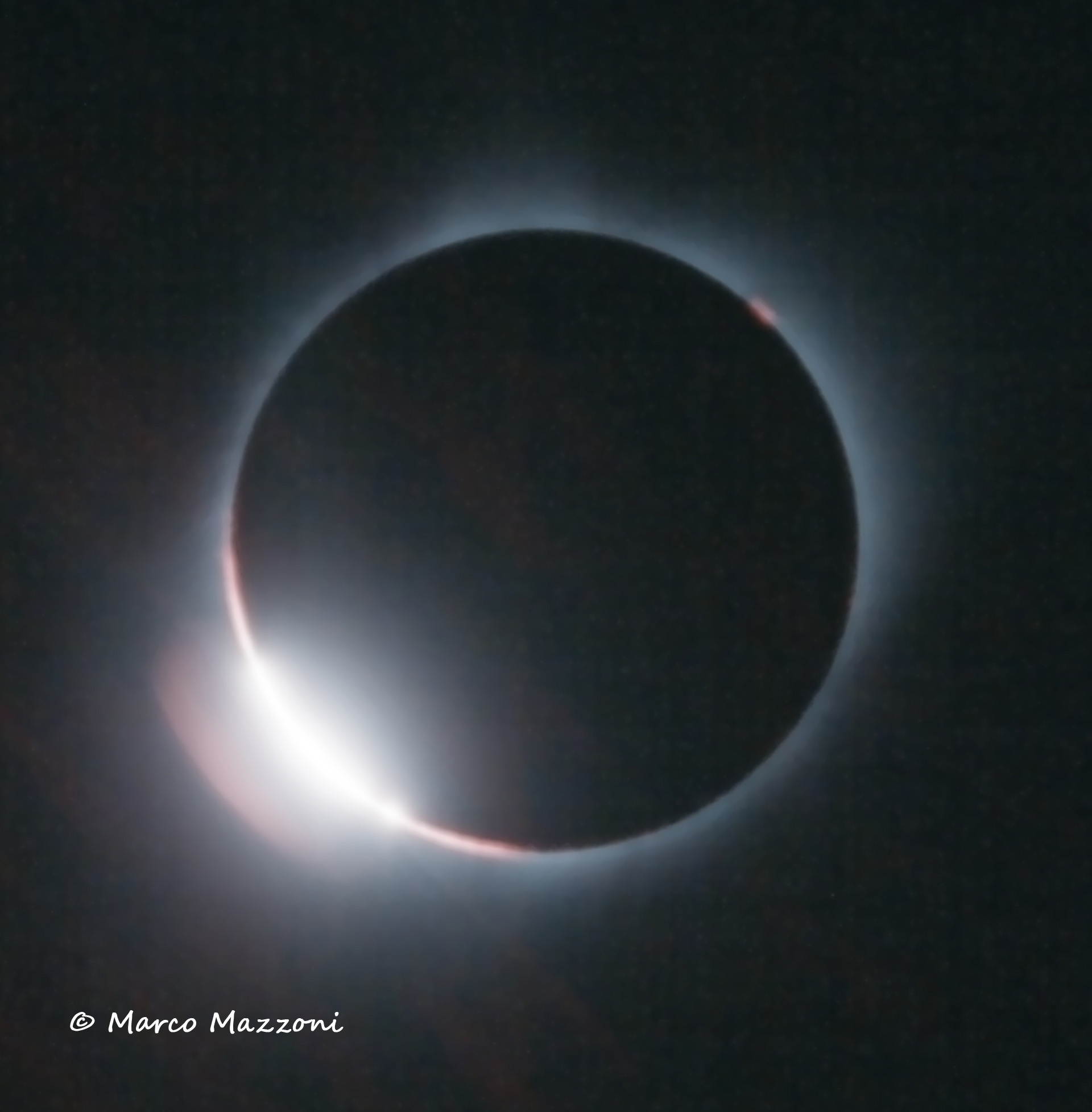 anello Finale -Firmato