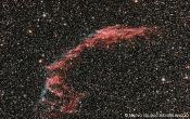 NGC6992: Network Nebula - Mazzoni