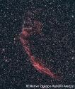 Nebulosa velo-RobertoCole